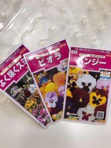 ビオラとパンジーの花の種