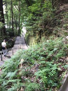 笠森寺までの坂道と段
