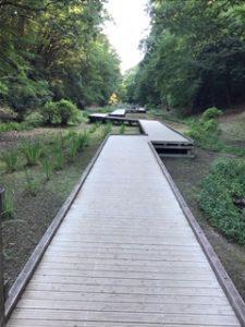 ひたすら続く木の遊歩道