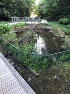 金網で囲った水たまり