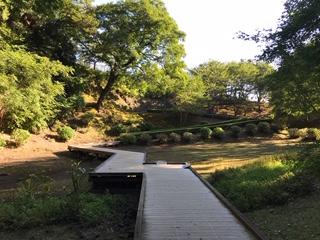 ホタル観賞用の遊歩道