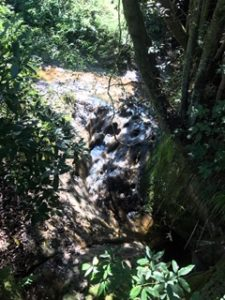 チバニアンまでの途中の渓流