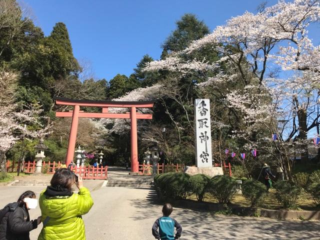 香取神宮の2の鳥居と桜